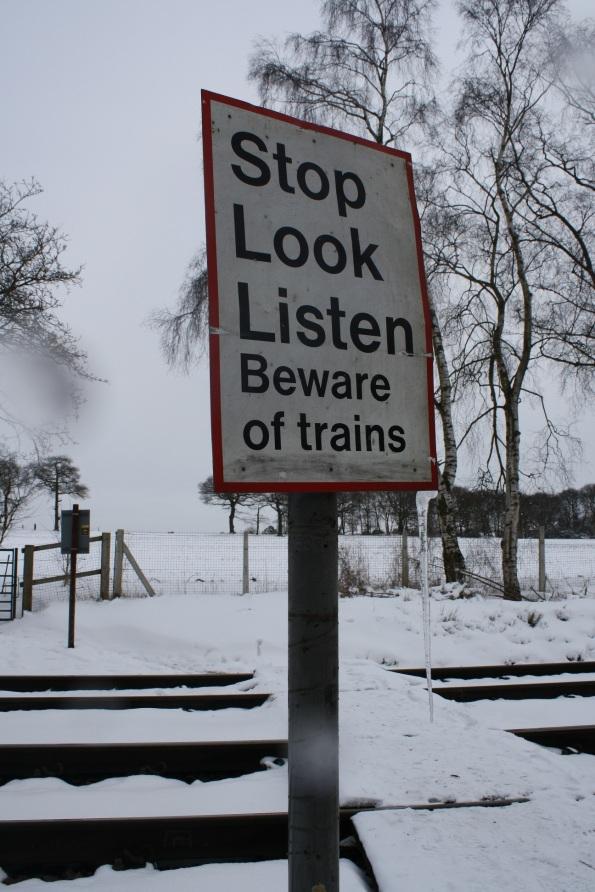 Hardwick Wood crossing